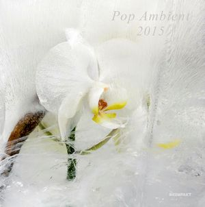 Kompakt – Hamarosan érkezik a Pop Ambient 2015-ös kiadása
