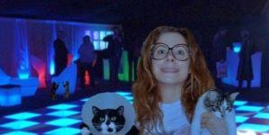 Megnyílt a világ első night klubja – macskáknak